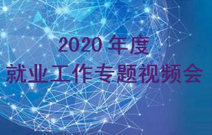 我校召开2020年度就业工作专题视频会